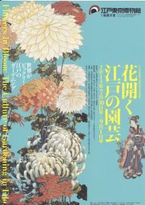 華開く江戸の園芸チラシ表_0002